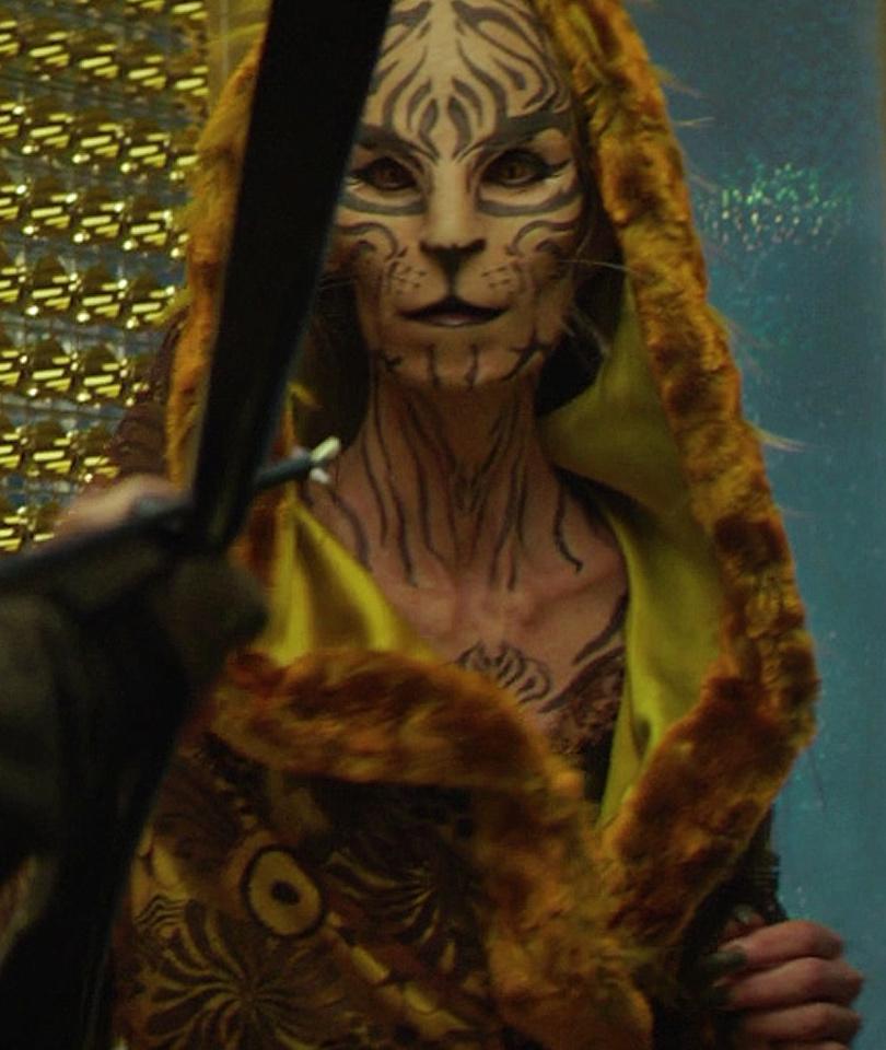 Image result for tigris