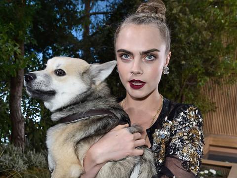 Cara Delevingne Brings Her Dog Leo to Paris Fashion Week