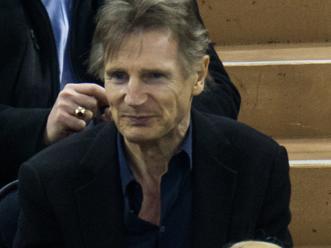 Good Genes! Liam Neeson Attends Hockey Game with His Two Handsome Sons