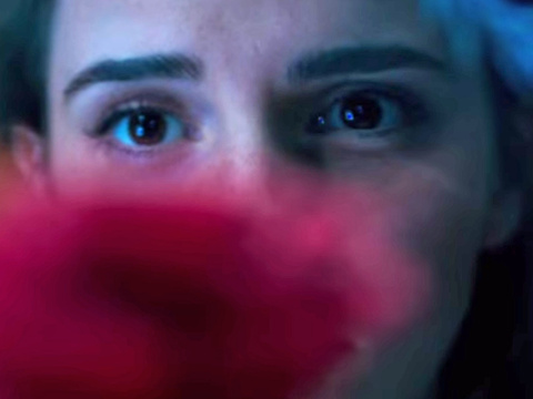 "Emma Watson Finds the Enchanted Rose In First ""Beauty and the Beast"" Teaser Trailer"