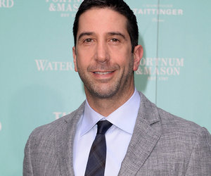 "David Schwimmer Wanted to ""Hide"" After ""Friends"" Success"