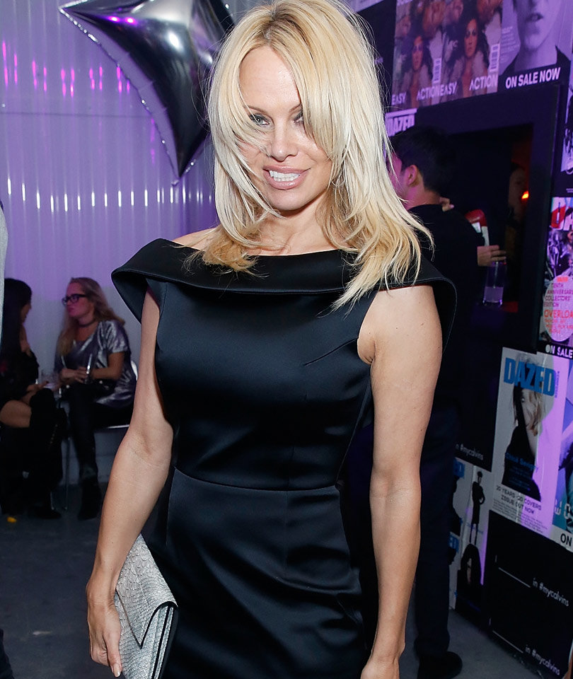 Pamela Anderson: I've Been Slapped, Hit, Spat On In Bed