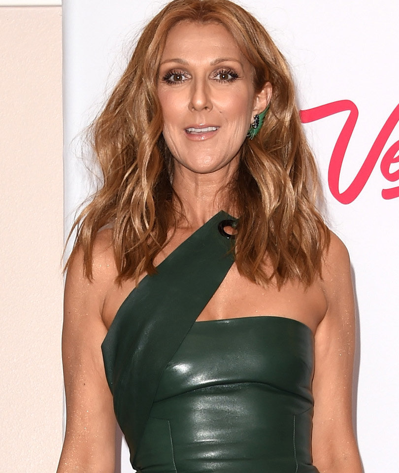 Celine Dion Is Going Back on Tour This Summer