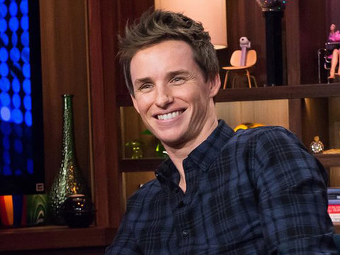 Eddie Redmayne Addresses Rumors He Dated Taylor Swift