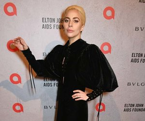 Lady Gaga's Velvet Gown -- Fab or Drab?