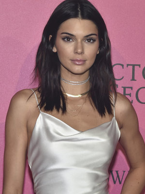 Kendall Jenner Flaunts Major Skin in See-Through Top (Photo)