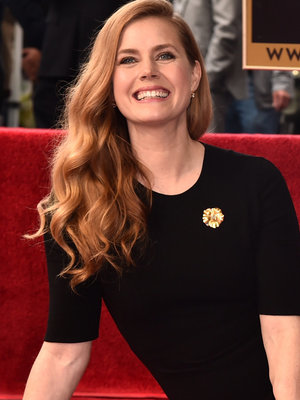 Amy Adams Supported by Adorable Daughter as She Receives Walk of Fame Star (Photo)
