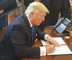 Celebrity Outrage Erupts Over Trump's Dakota Access Pipeline News