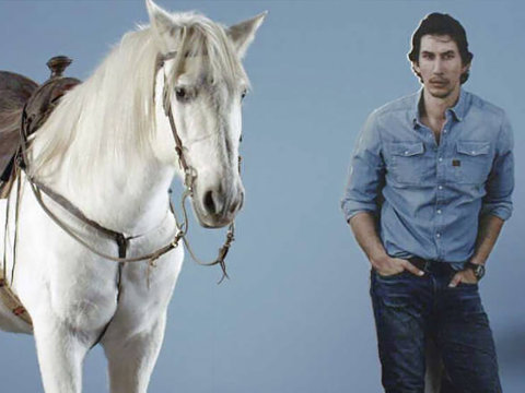 A Horse, Adam Driver and Snickers? What Is This All About...