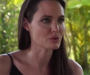 How 2 Hamsters, 2 Dogs, 2 Kids in 1 Room Help Angelina Jolie Cope With Divorce