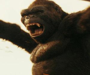 5 Reasons Critics Love 'Kong: Skull Island' (And 3 Reasons Some Don't)