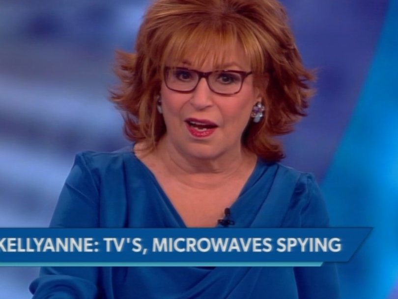 'The View' Mocks Kellyanne Conway's 'Microwave' Surveilance Comments: 'My Dishwasher Called Me a Bitch' (Video)