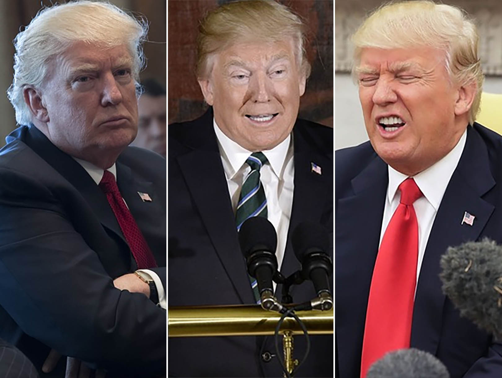 trump_faces