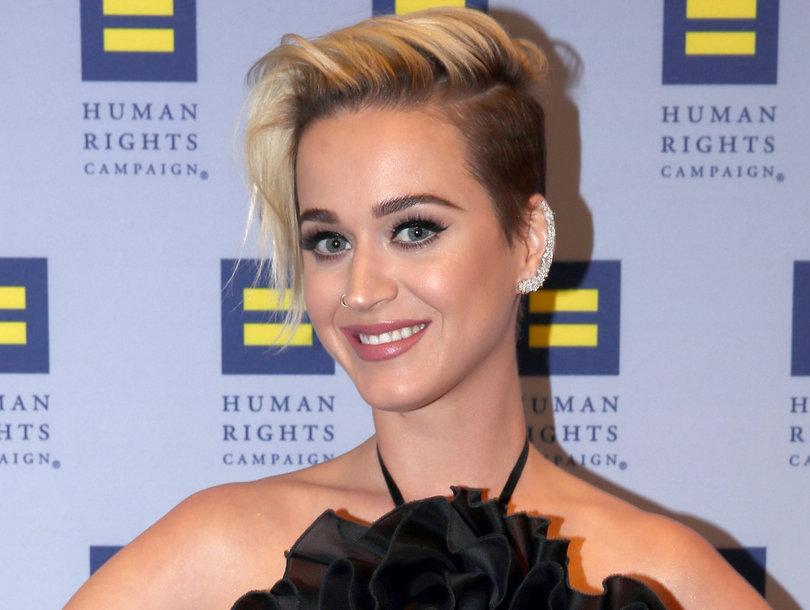 Katy Perry Thinks She Looks Like Guy Fieri In Spiky New Side-by-Side