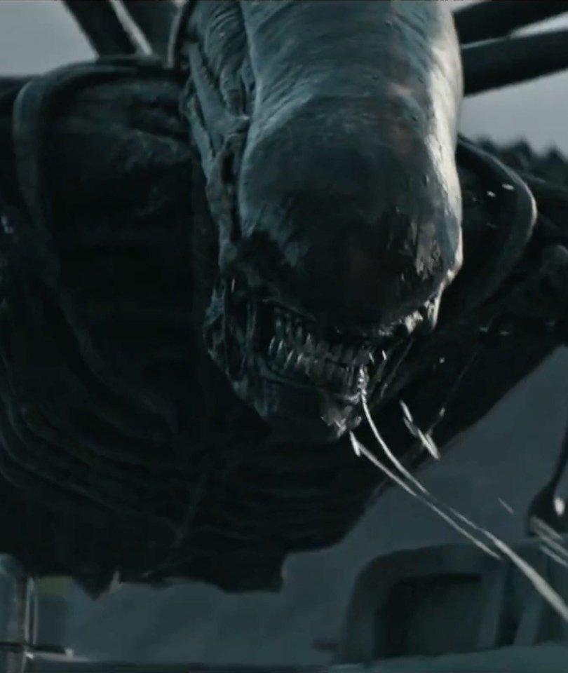 5 Reasons Critics Love 'Alien: Covenant'