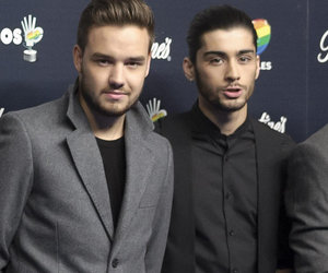 Liam Payne Just 'Don't Understand' Why Zayn Malik Hated One Direction