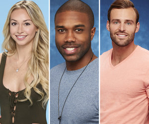 'Bachelor In Paradise' Season 4 Cast Revealed