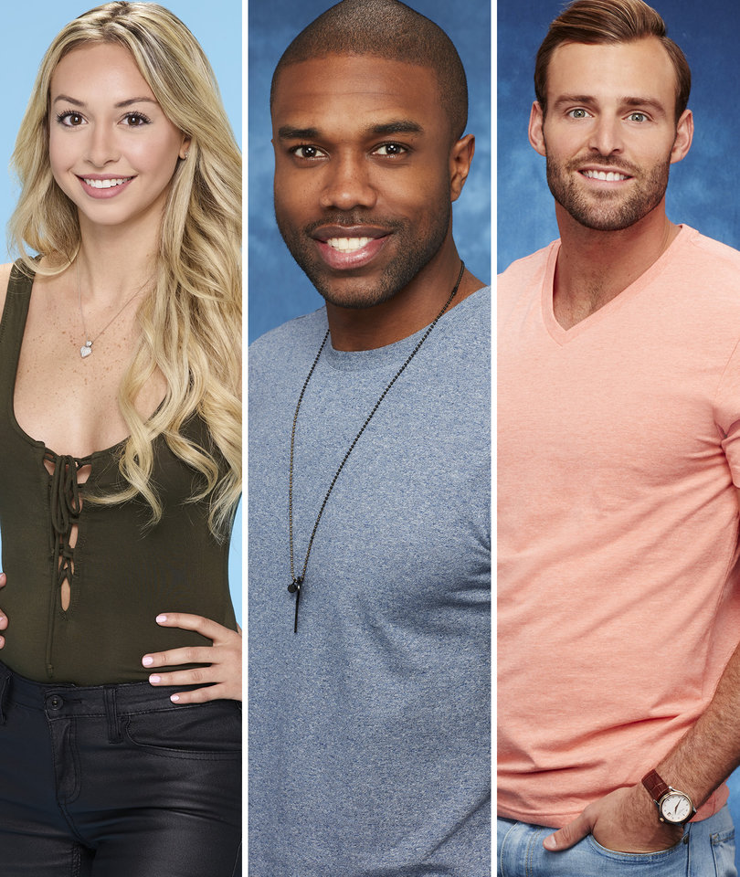 'Bachelor in Paradise' Production Halted Over Allegations of Misconduct