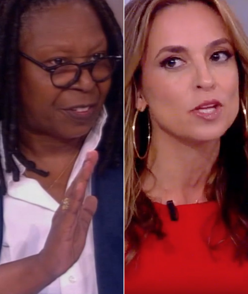 Gun Control Debate Heats Up 'The View' After Alexandria Shooting