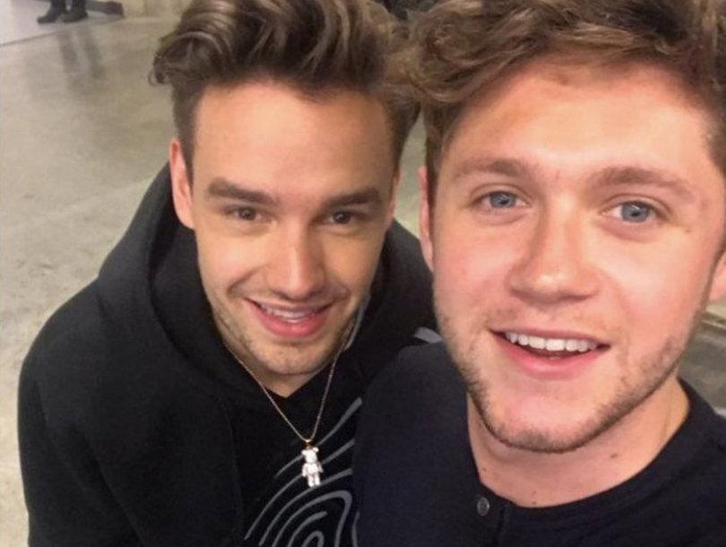 Liam Payne and Niall Horan Reunite