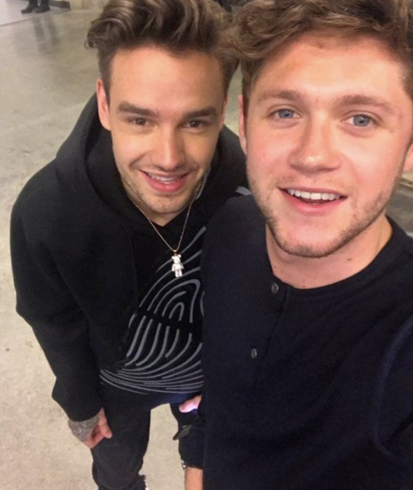 Liam Payne and Niall Horan Reunite