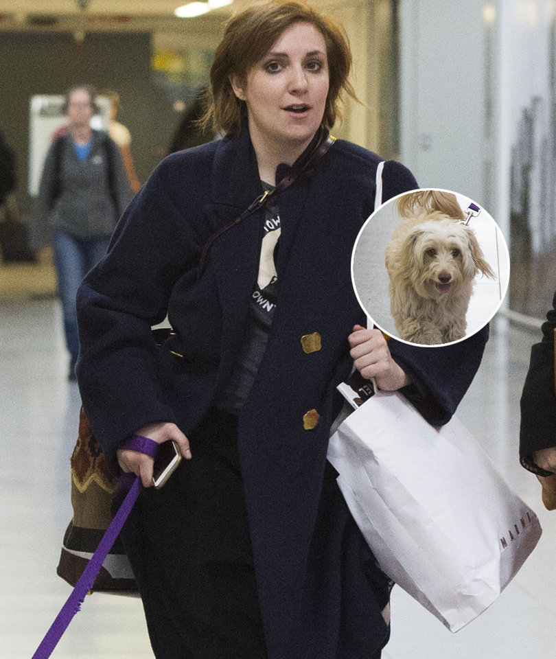 Lena Dunham Fires Back at Animal Shelter Claiming She Lied