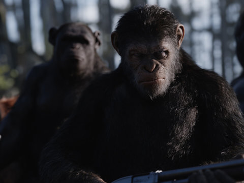 'War for the Planet of the Apes' TooFab Review: Incredibly Grim