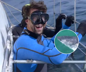 Michael Phelps Encounters 2 Great White Sharks and It's Scary AF