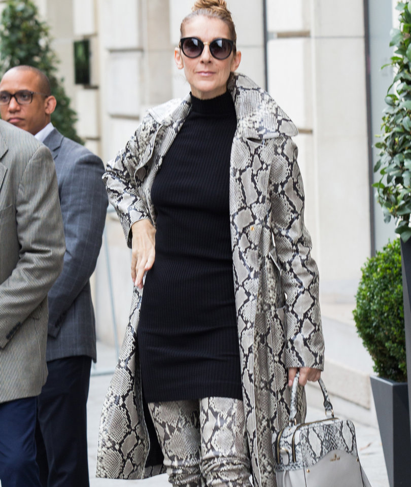 Celine Dion Slithers Out of Her Hotel in Head-to-Toe Snake Skin