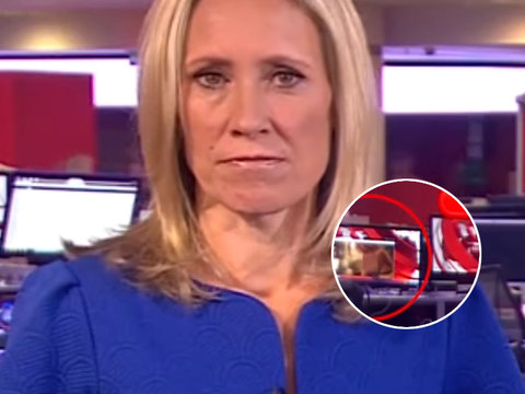 We Now Know Which Celebrity's Boobs Went Viral In That BBC News Blooper