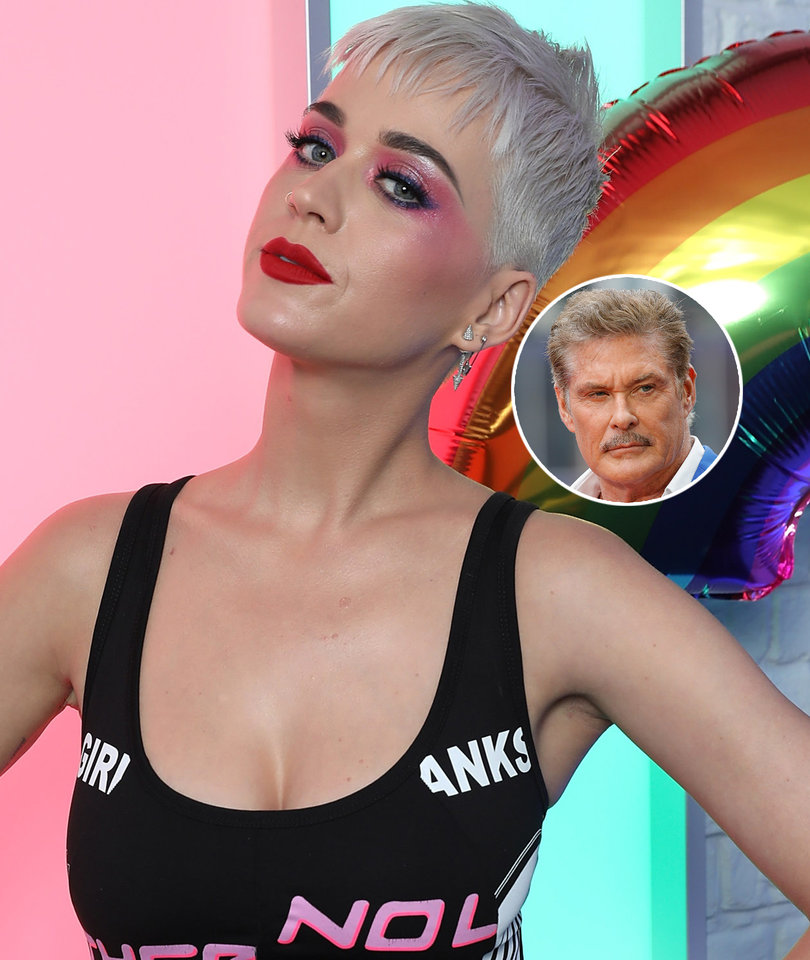 Here's What Katy Perry Thinks About David Hasselhoff As Potential 'Idol' Judge