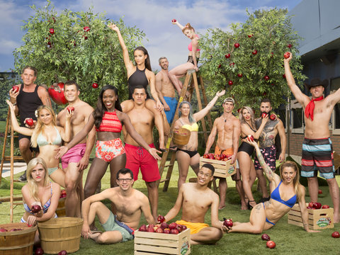 17 'Big Brother' Season 19 Houseguests Ranked From Worst to First