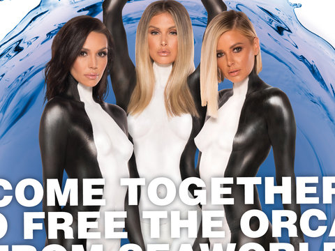 'Vanderpump Rules' Ladies Get Naked for Orcas
