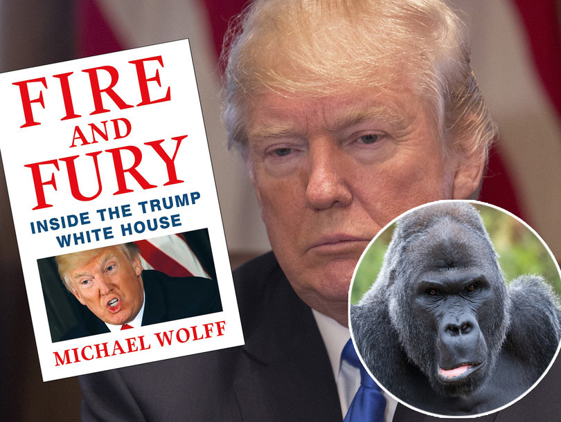 Twitter Goes Bananas Over 'Gorilla Channel' Parody of Michael Wolff's Trump Book