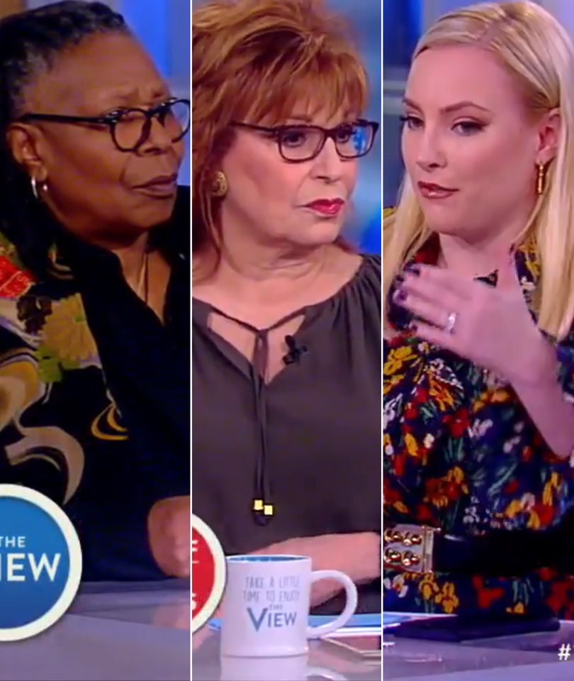 'The View' Debates 'Slippery Slope' of Gun Reform After Shooting