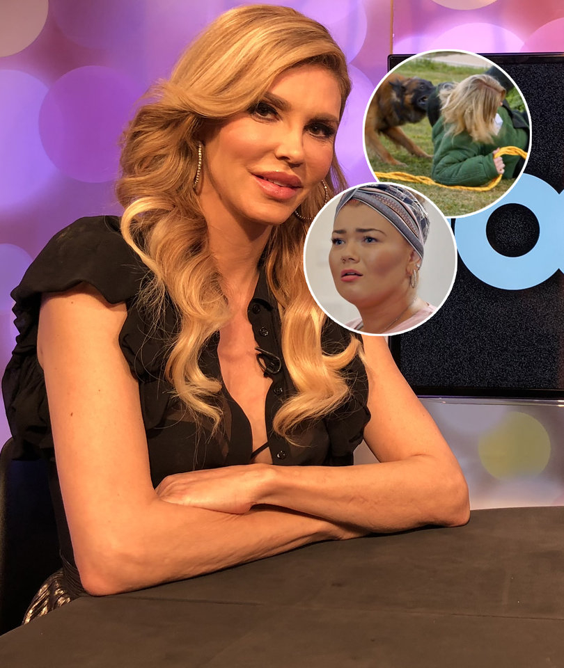 Brandi Glanville's 'Conspiracy Theory' About 'Boot Camp' Dog Attack