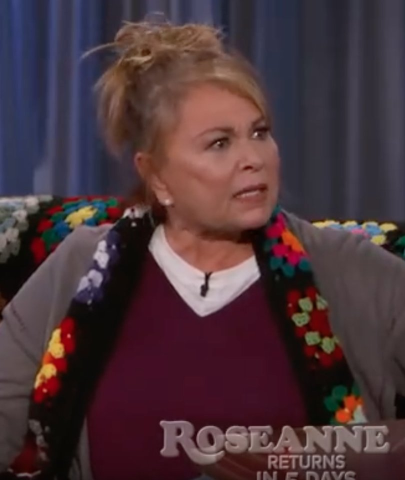 'Zip That F---ing Lip!' Roseanne Barks Back at Jimmy Kimmel's Trump Criticism