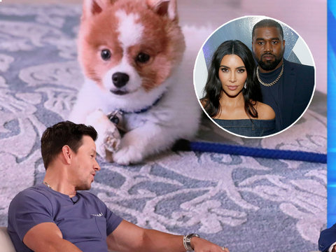 Mark Wahlberg's Wife Thought Kim and Kanye Were Coming Over for Dinner, Puppy Shows Up Instead